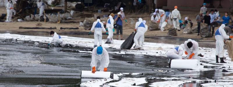 Científicos mexicanos estudian bacterias que evitan los derrames de petróleo