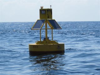 Emerging Data and Models from the Gulf of Mexico