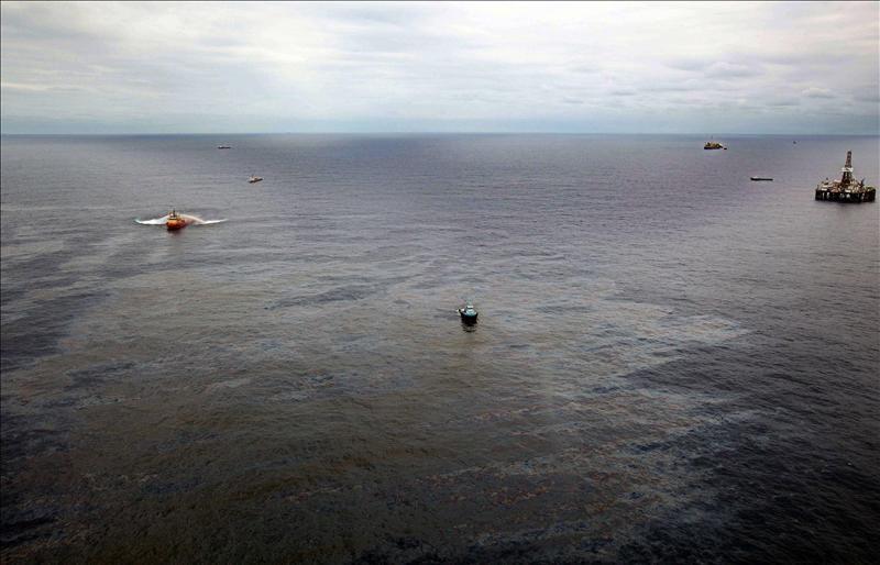 Elaboran proyecto para identificar bacterias degradadoras de petróleo en el Golfo de México
