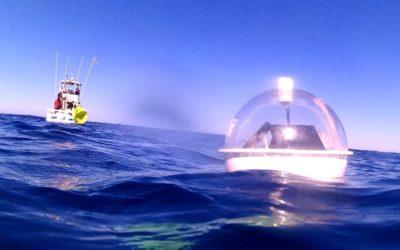 CIGoM: protección de ecosistemas marinos contra derrames de hidrocarburos