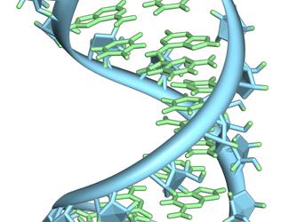 "5º Taller de Bioinformática ""Metatranscriptómica Ambiental"""