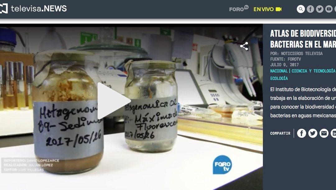 """Reportaje """"Atlas de biodiversidad de bacterias en el mar"""""""