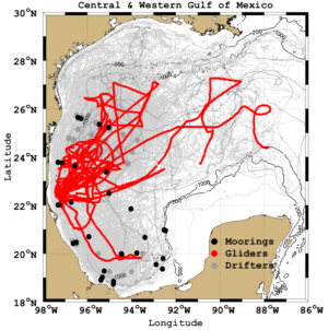 New insights into the circulation in the Western Gulf of Mexico from Eulerian, Lagrangian and Autonomous observing platforms