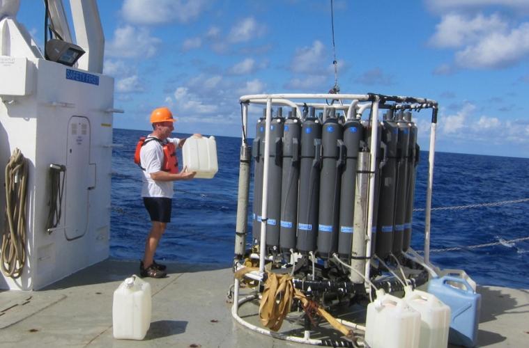 Científicos analizan el ecosistema del Golfo de México