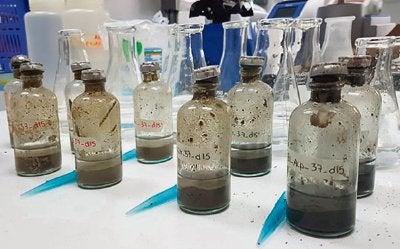 Máquinas microbianas