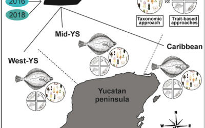The performance of taxonomic and trait-based approaches in the assessment of dusky flounder parasite communities as indicators of chemical pollution